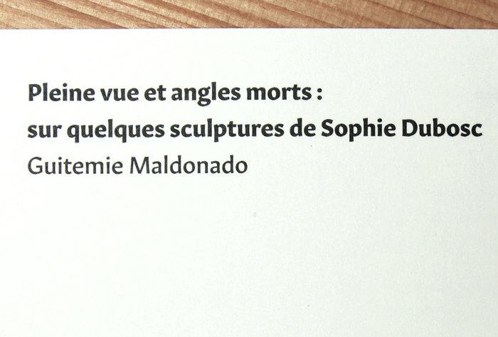 Avec ou sans raison by Sophie Dubosc 4