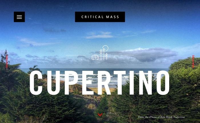 Critical Mass website 8