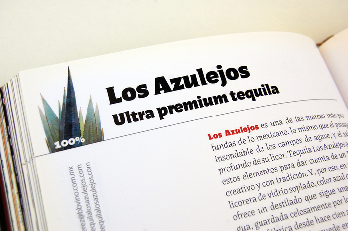 Guía del Tequila, Artes de México 7