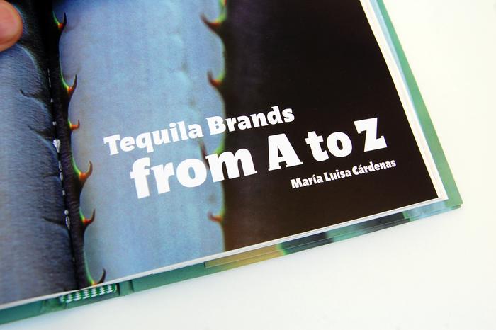 Guía del Tequila, Artes de México 11