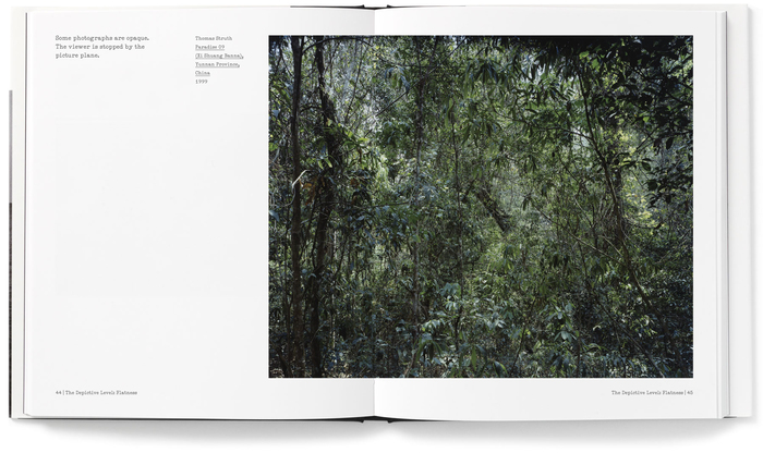The Nature of Photographs (Phaidon) 4