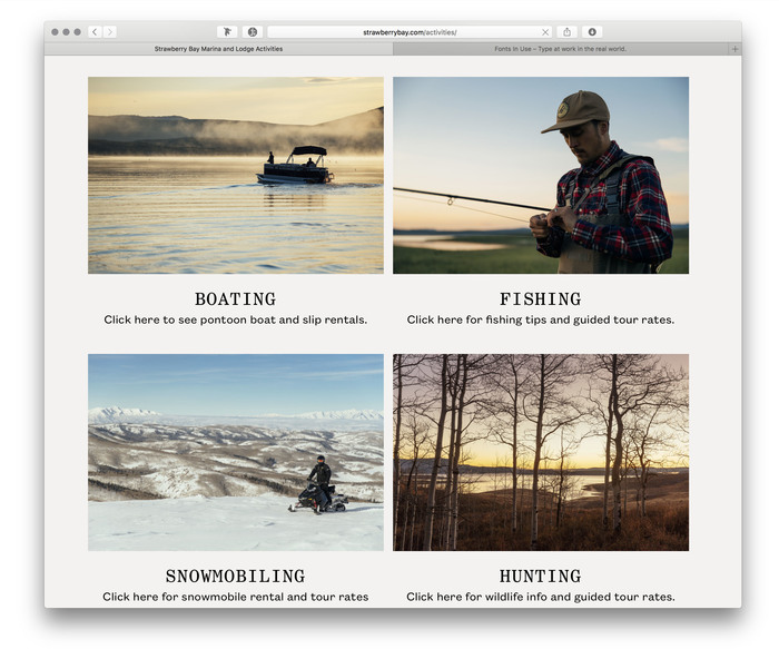 Strawberry Bay website (2017) 2