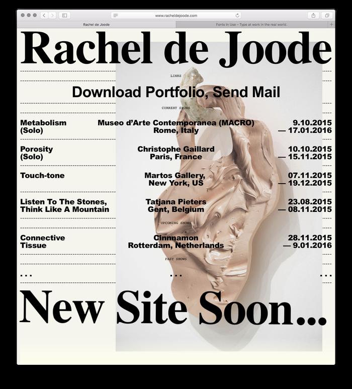 Rachel de Joode's portfolio website (2017)