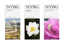 NYBG identity (2016)