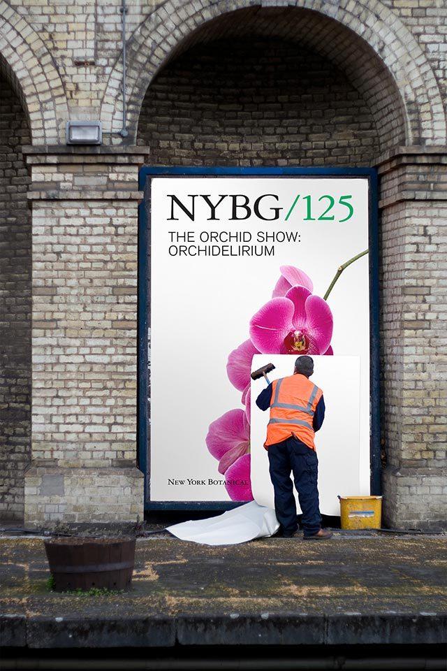 NYBG identity (2016) 5