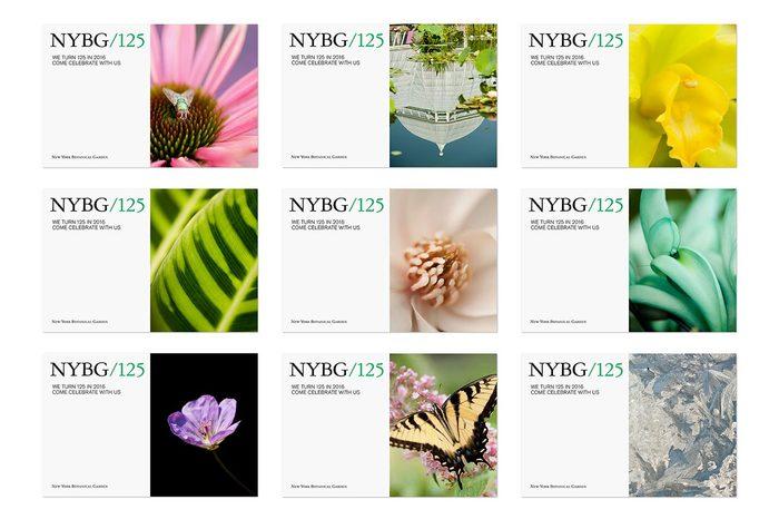 NYBG identity (2016) 7