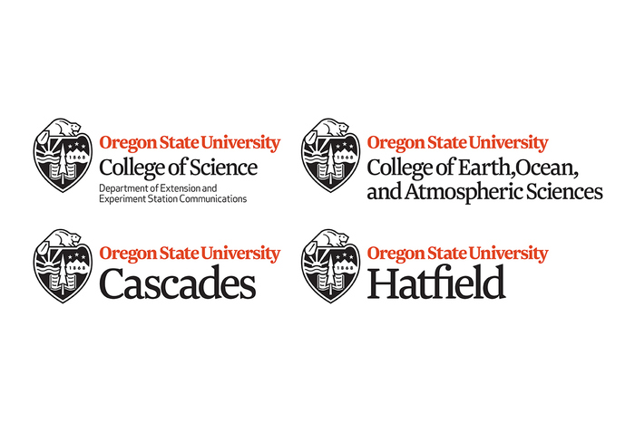 The new identity system uses the Roman typeface Newzald to unify the university's colleges and sister campuses.