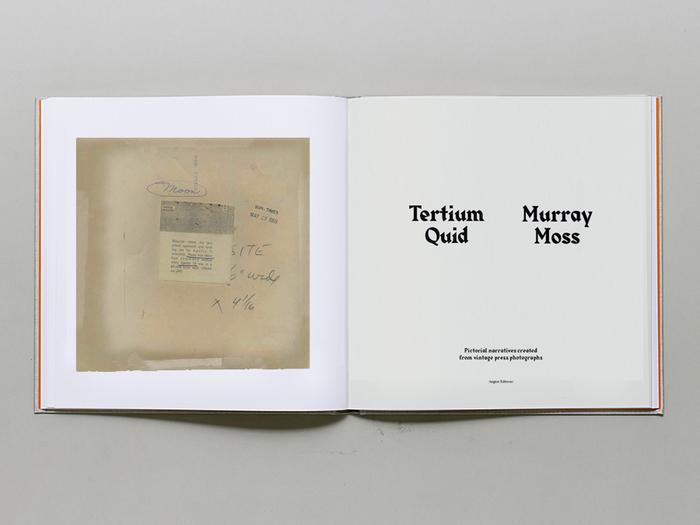 Tertium Quid by Murray Moss 2