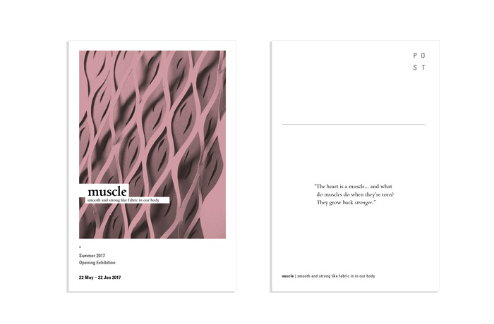 Muscle 4