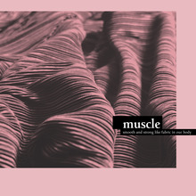 <cite>Muscle</cite>