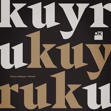 <cite>Kuyruk</cite> by Basma Abdel Aziz