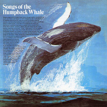 <cite>Songs Of The Humpback Whale </cite>album art