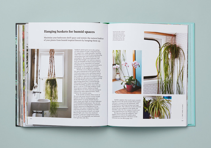Get Plants 5