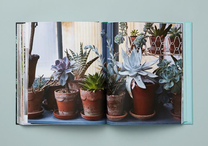 Get Plants 6