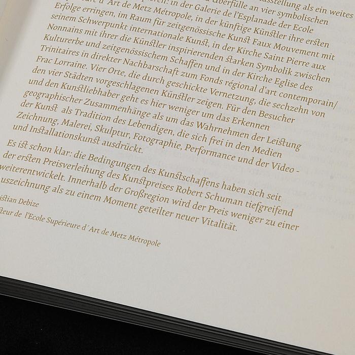Robert Schuman Art Prize 4