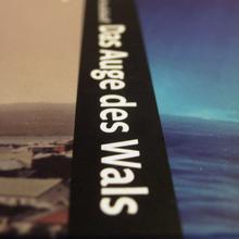 <cite>Das Auge des Wals</cite> by Arthur Krasilnikoff