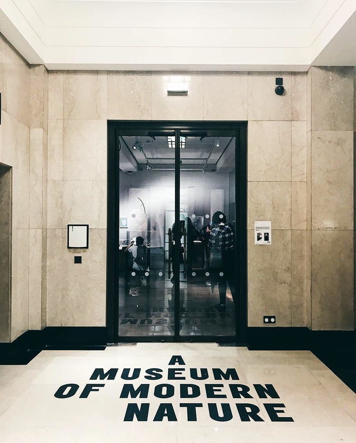 A Museum of Modern Nature exhibition 3