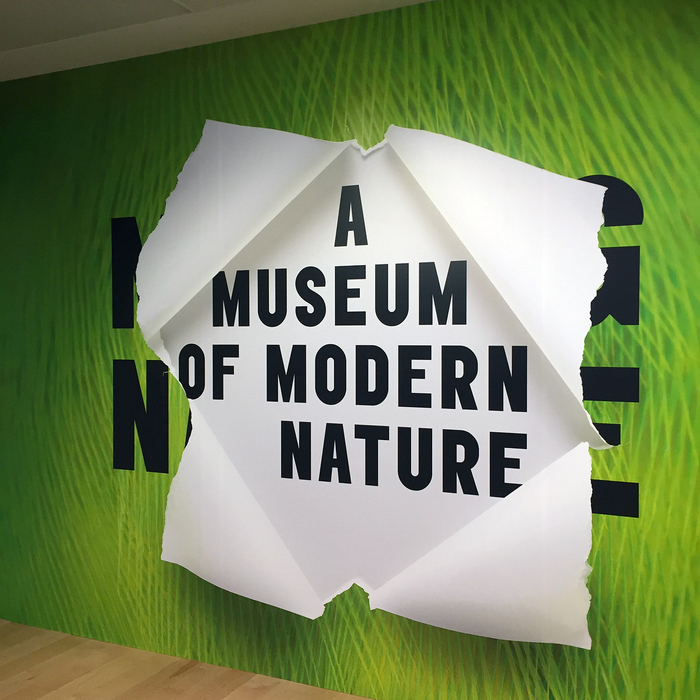 A Museum of Modern Nature exhibition 4