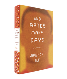 <cite>And After Many Days</cite> by Jowhor Ile