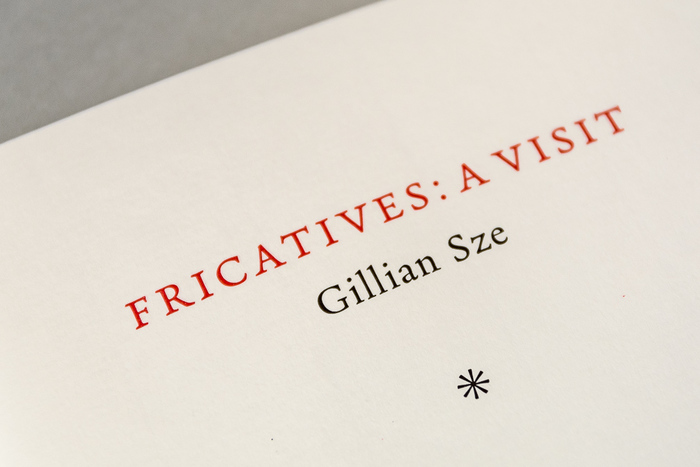 Fricatives by Gillian Sze 3