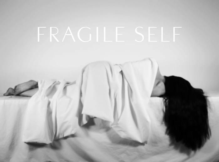 Fragile Self identity and artwork 1