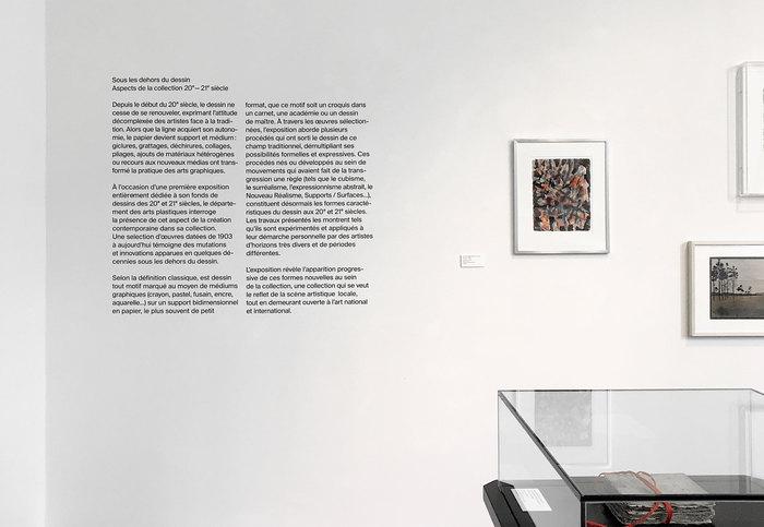 MahN — Sous les dehors du dessin exhibition 5