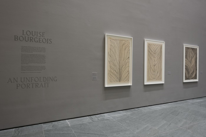 Louise Bourgeois — An Unfolding Portrait 5