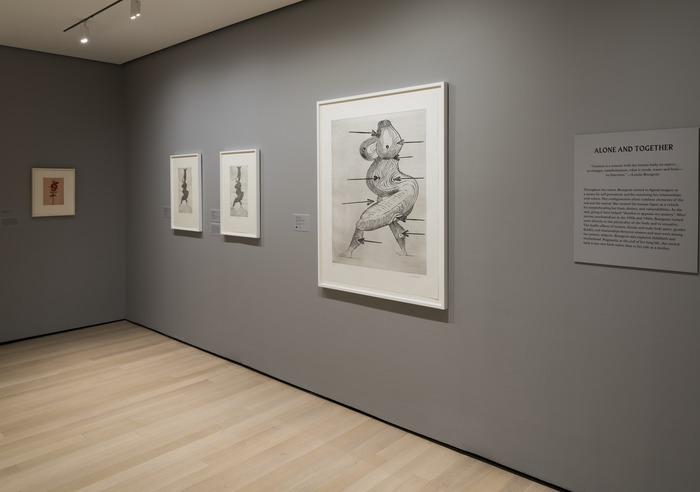 Louise Bourgeois — An Unfolding Portrait 7