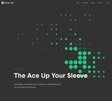 Envy Labs website