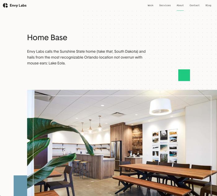 Envy Labs website 2
