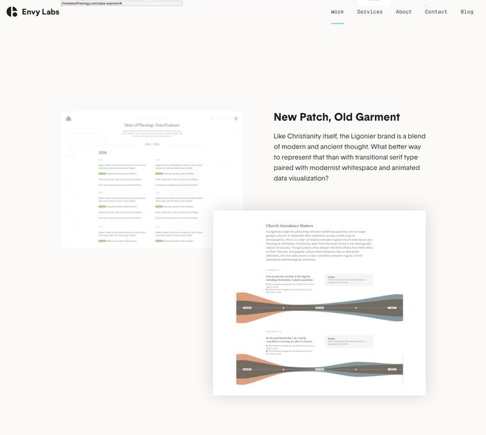 Envy Labs website 6