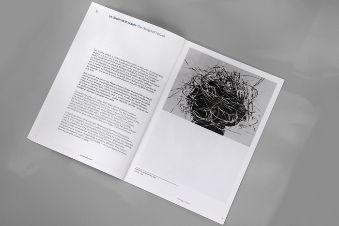 Albert Renger-Patzsch — Things 8