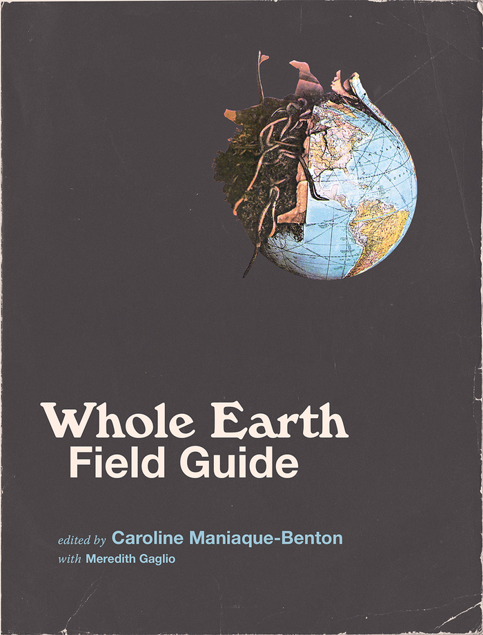 "The hardcover edition stays closer to the original: ""Whole Earth"" here is set in Windsor."