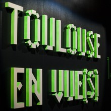 Toulouse en vue(s)