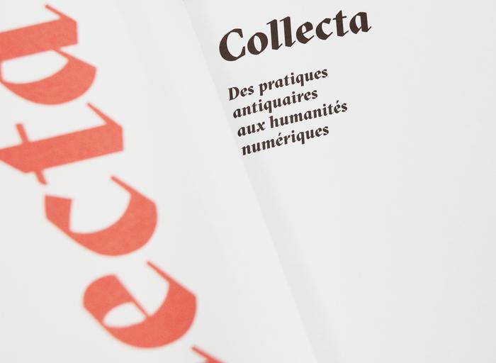 Collecta 8