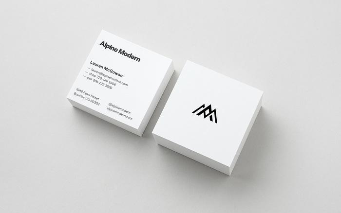 Alpine Modern Brand 2