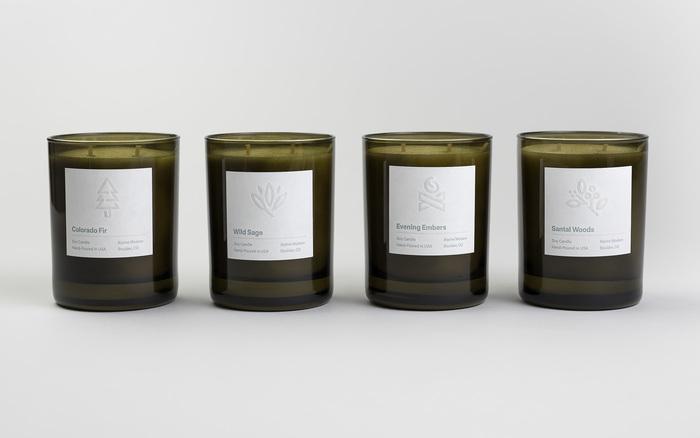 Alpine Modern Brand 3
