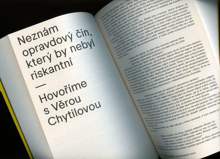 Galina Kopaněva. Spatřit a napsat. Filmové kritiky, statě a rozhovory 2