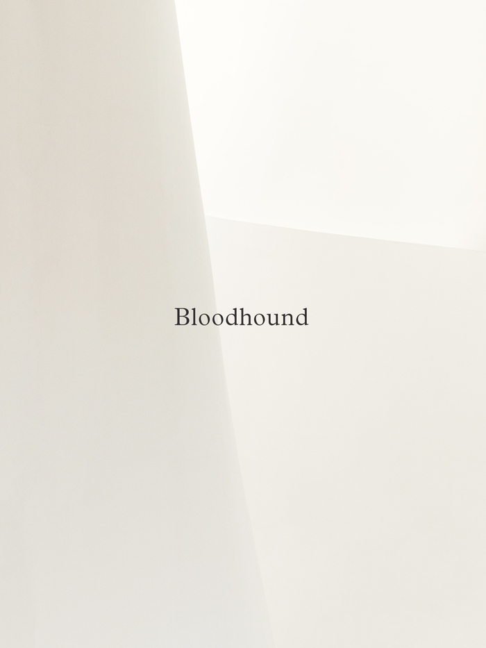 Bloodhound Studio 1