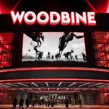 Woodbine Rebranding