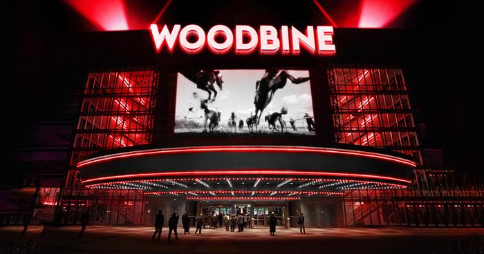 Woodbine Rebranding 5