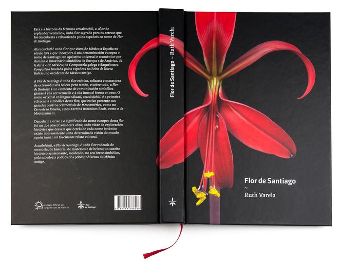 Flor de Santiago by Ruth Varela 1