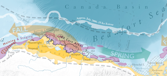Ecological Atlas of the Bering, Chukchi, and Beaufort Seas 3