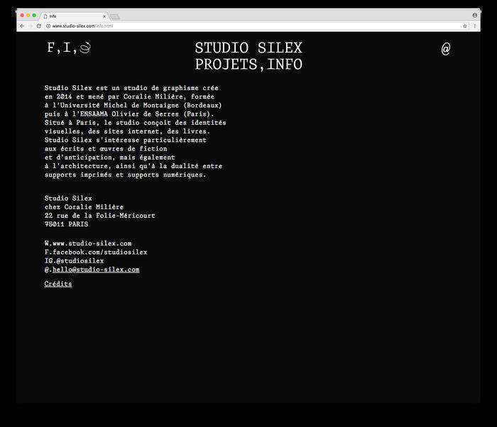 Studio Silex website/identity 6
