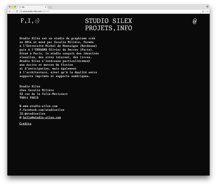 Studio Silex website/identity 6