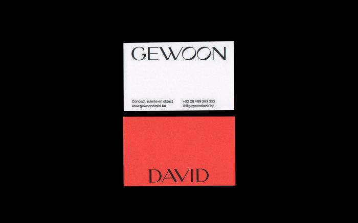 Gewoon David 1