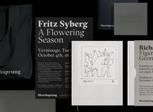 The Hirschsprung Collection identity (proposal)