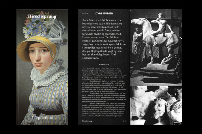 The Hirschsprung Collection identity (proposal) 3