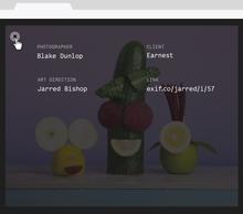 Exif.co website