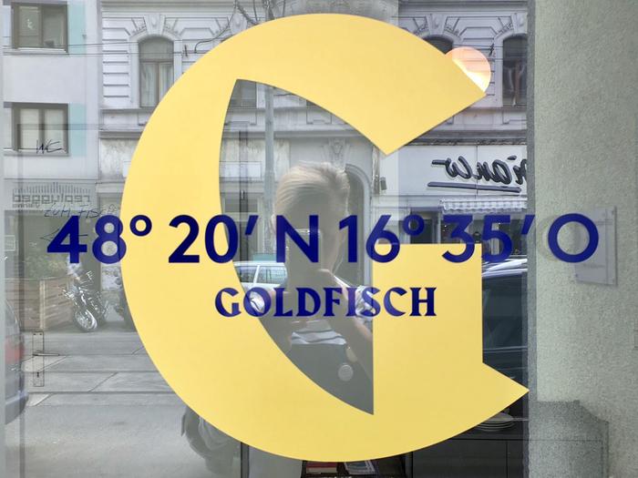 Goldfisch 1